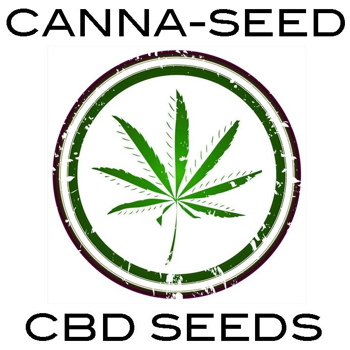 Canna-Seed CBD Seeds