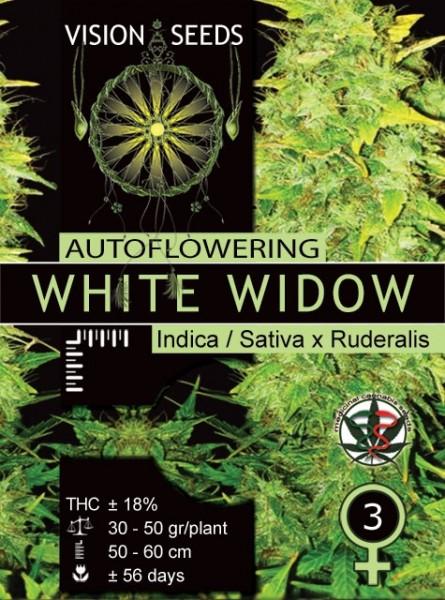 White Widow Auto