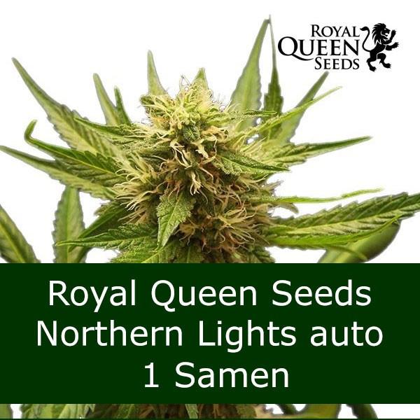 1 Seed NL auto - RQS Bonus