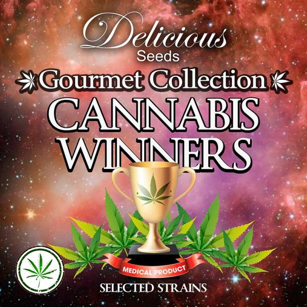 Gourmet Collection Cannabis Winners 1