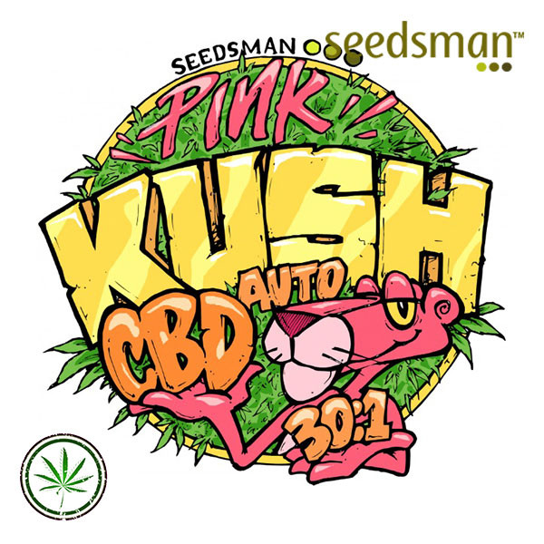 Pink Kush CBD 30:1 Auto