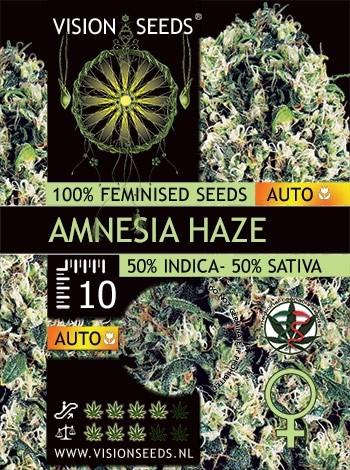 Amnesia Haze Auto